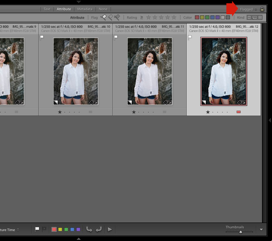 The Flagged setting in the Filter Bar in Lightroom's Grid View